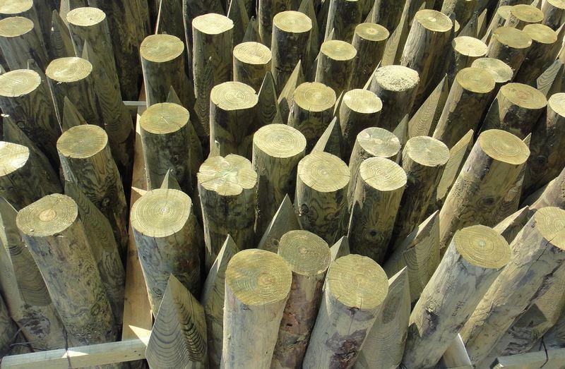 piquets bois poteaux bois pour vergers piquets pour palissage arbo filpack groupe. Black Bedroom Furniture Sets. Home Design Ideas