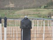 structure poteaux béton